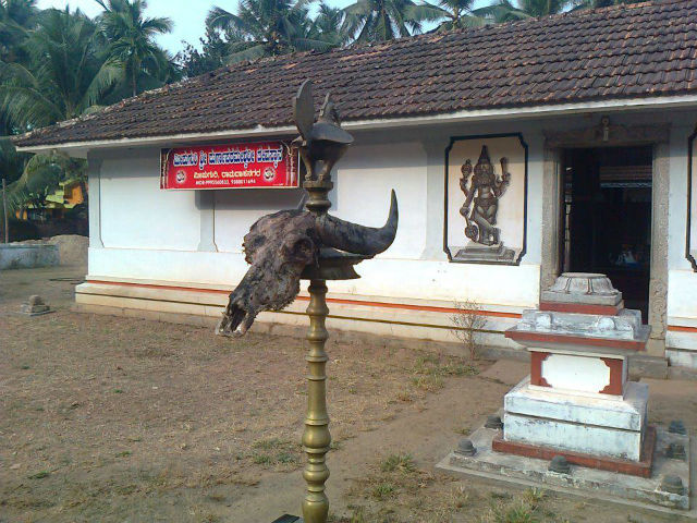 buffalo skull outside hindu temple kerala