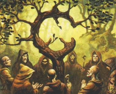 the plight of the ancient druid religion in celtic society Ancient druids: why were the romans so afraid of them archaeologist francis pryor takes us on a journey into britain's ancient druid past we lost the only link to their fascinating religion and culture, and we are left with many puzzles to unravel.