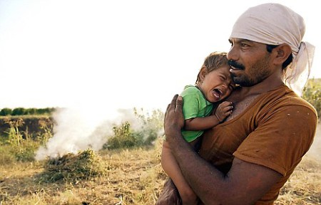 India : Monsanto's Seeds Of Suicide