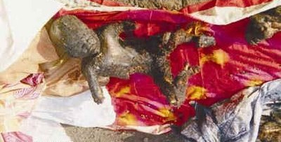2002 Gujarat Riots What The Media Dont Want You To Know Hindu Human Rights Online News Magazine