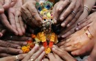 Krishna Janmashtami: Festivity grips nation, all set for Dahi Handi