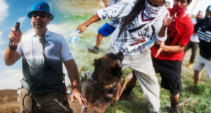 Video  : Peaceful Protesting Native Americans Violently attacked with Dogs and Pepper Spray