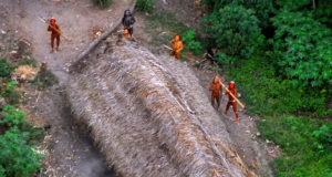 'lost' Amazon tribals are 'killed, chopped up and thrown in river by Gold miners